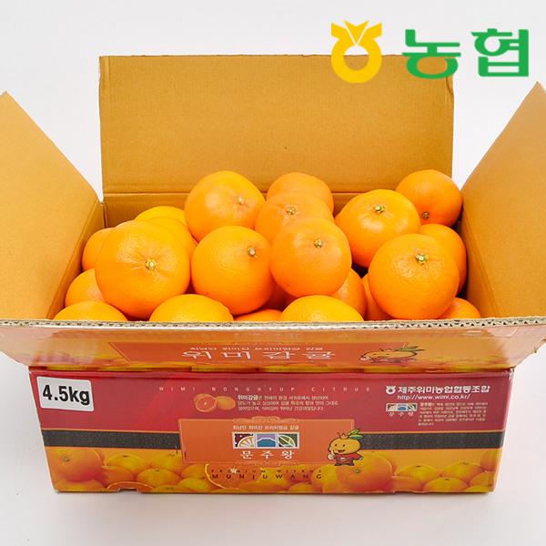 [제주농협] 제주직송 농협 천혜향4.5kg중과 특품, 상세 설명 참조 추천해요