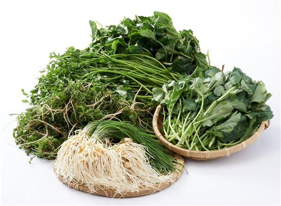 제철음식 봄나물의 종류와 효능!