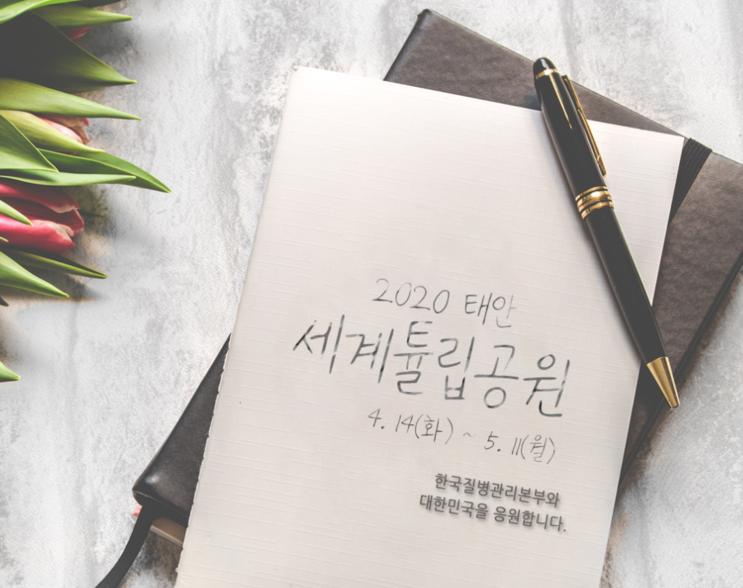 2020 4월 봄꽃축제 소개 정리