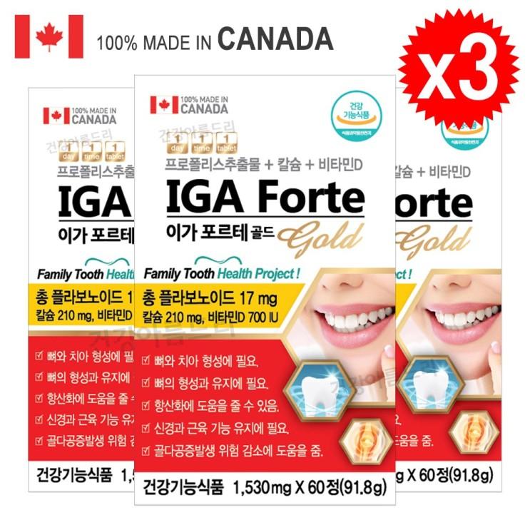 캐나다 프로폴리스+잇몸칼슘+비타민D 이가 포르테 골드 60정, 3개 추천해요