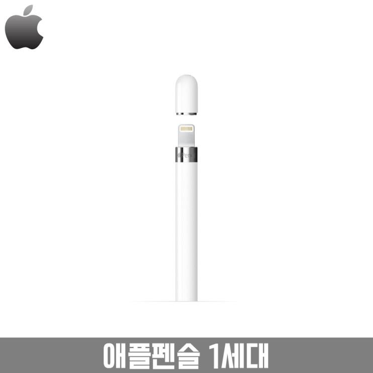 [초대박상품] 애플 펜슬 - Apple 애플 펜슬 1세대  (With 함소원, 소식)