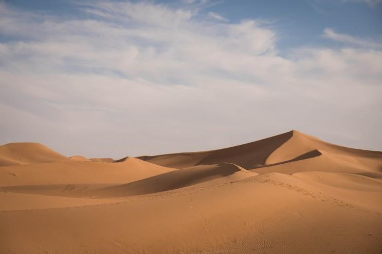 아휴 목말라~~사막에 있는 것도 아닌데~~
