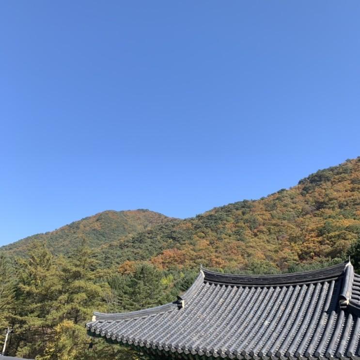 단풍구경) 치악산
