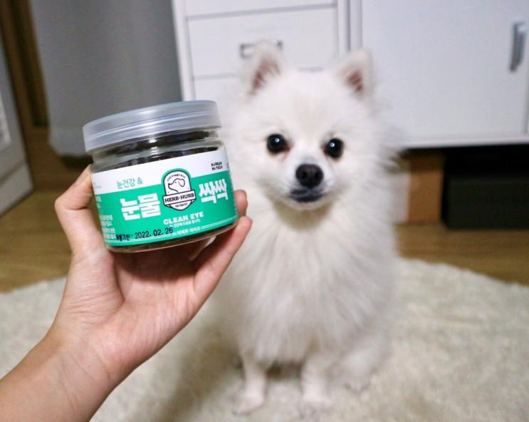 천연 재료로 만든 강아지 눈물 영양제 :: 눈물싹싹 급여 후기