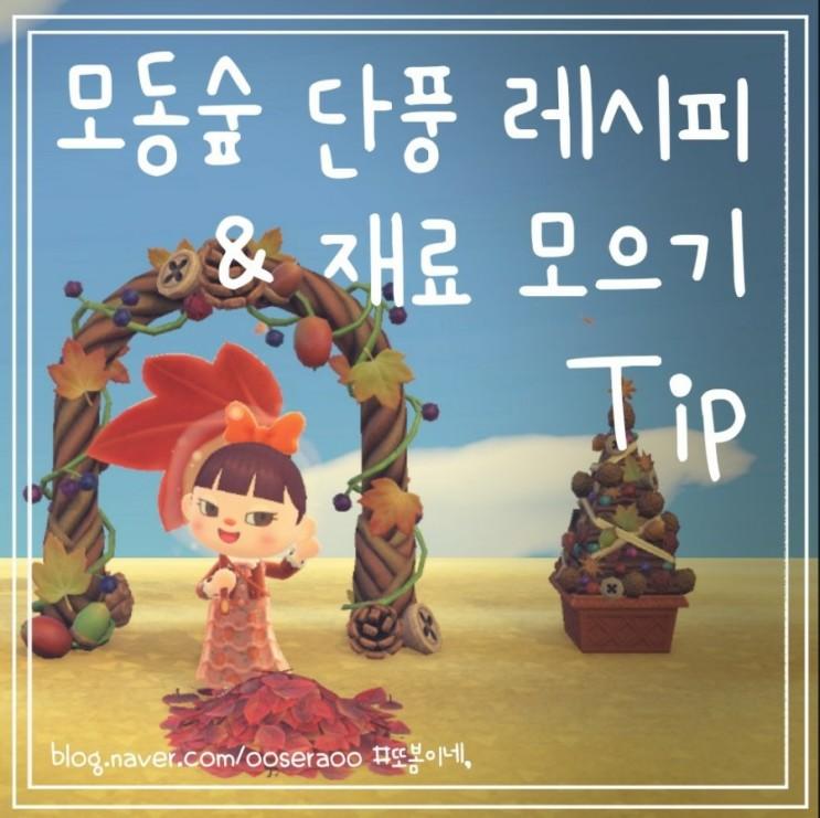 모동숲 단풍 레시피 & 단풍잎 도토리 솔방울 등 DIY 재료 얻기와 리폼까지!