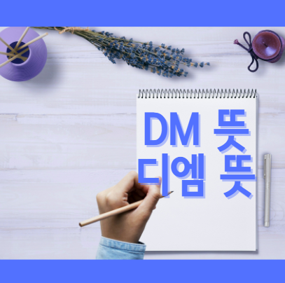 DM뜻 디엠뜻 인스타 dm 보내기