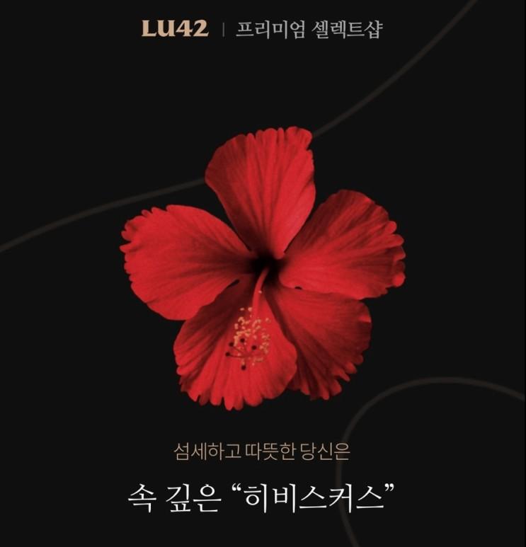 [LU42] 꽃 MBTI 성향테스트해보기