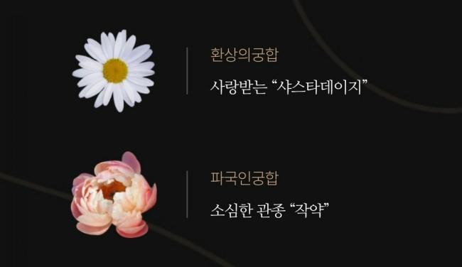 꽃 MBTI 마이웨이 라넌큘러스 모이세요