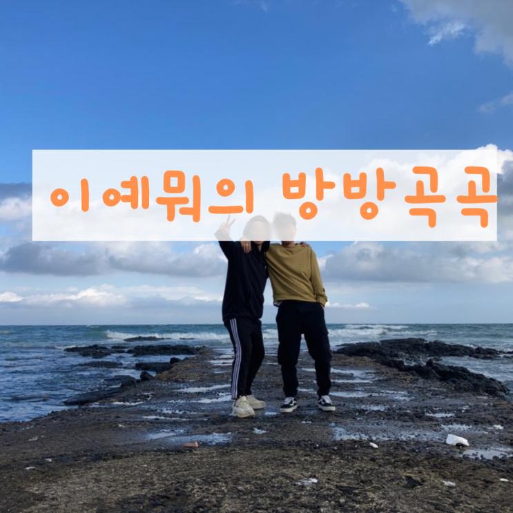 2박 3일 제주도 동쪽 함덕 여행 총정리!(feat.형제의 여행)