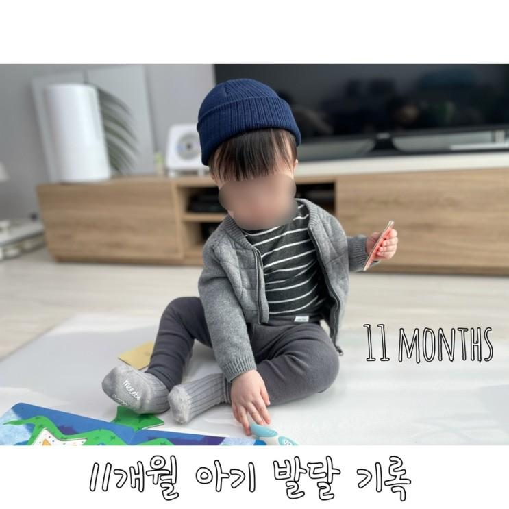 11개월 아기 발달 기록
