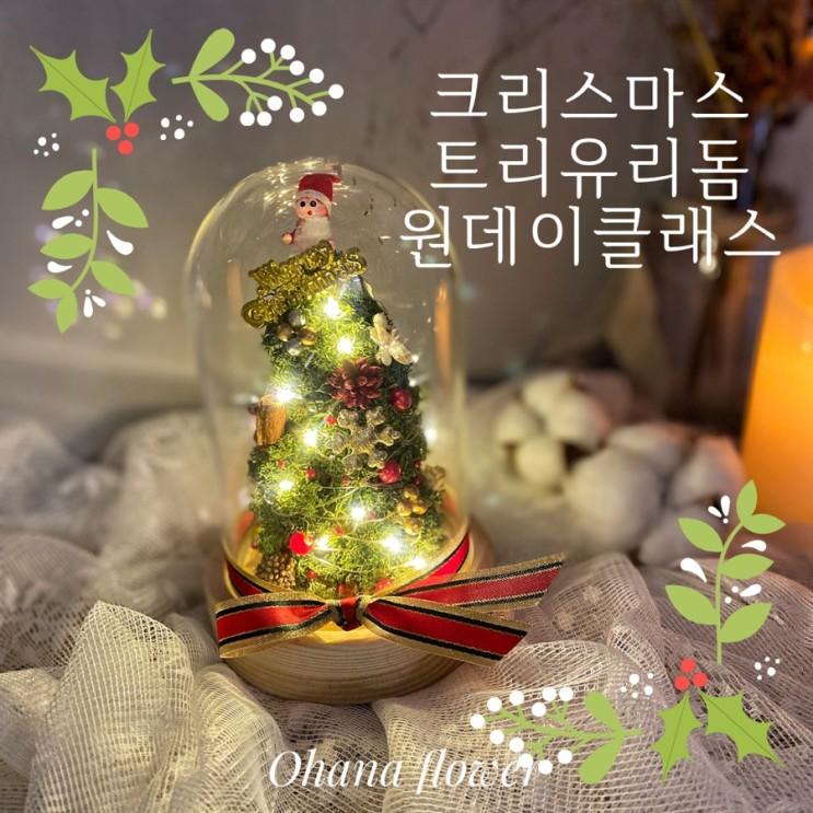 크리스마스 트리 유리돔 원데이클래스