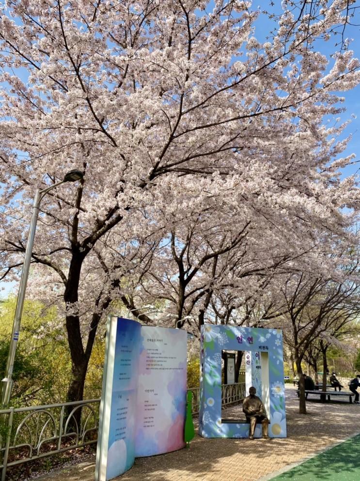 2021년 4월 1일 서울 벚꽃 숨겨진 명소 허밍웨이 길 피천득 앞까지 꼭