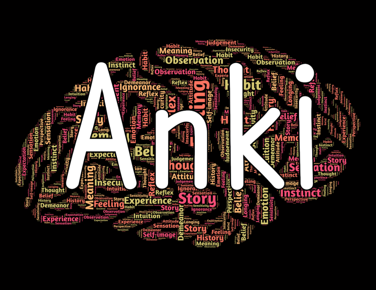 Anki , 지능형 암기 프로그램
