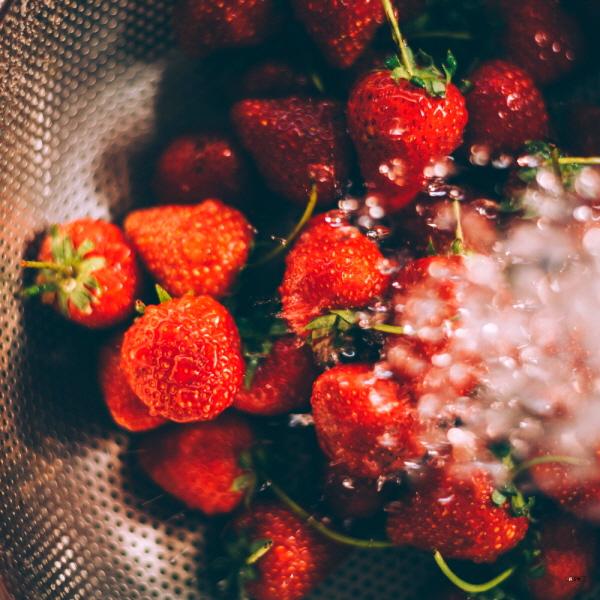 딸기 효능 및 칼로리 그리고 곰팡이가 생기는 이유