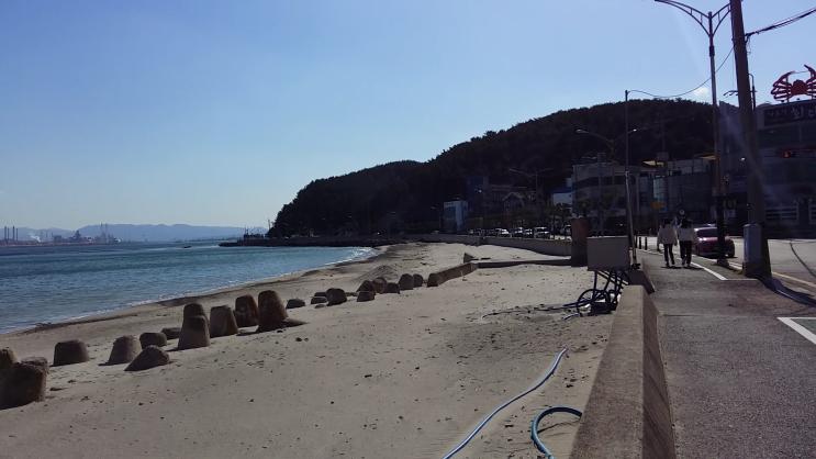 포항부동산 디디하우스에도 없는 맛집이 포진한 환호동 바닷가땅 토지매매