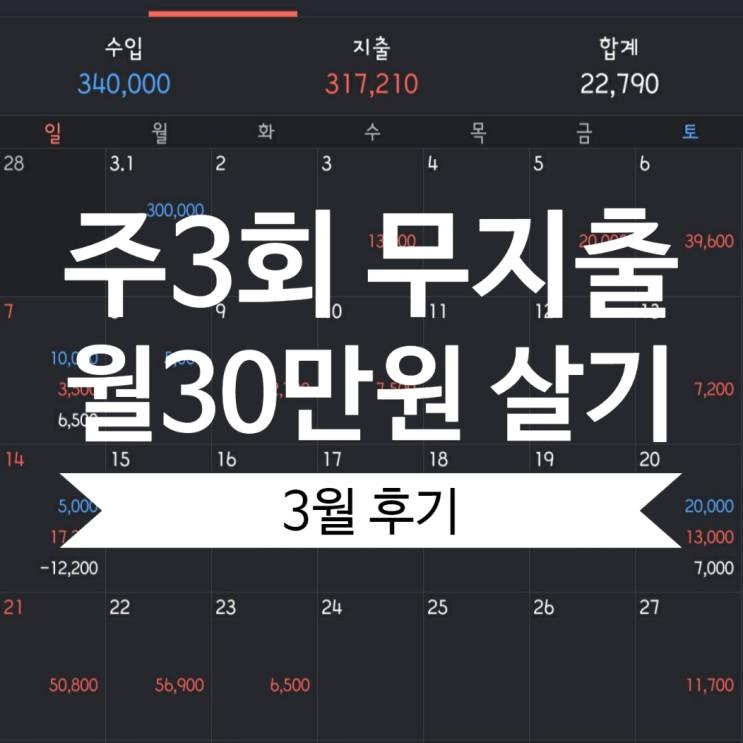 [월재연] 무지출데이 데이,한달 30만원 살기 도전 후기