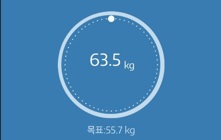 누베베 감비엑스 다이어트 식단 56일차