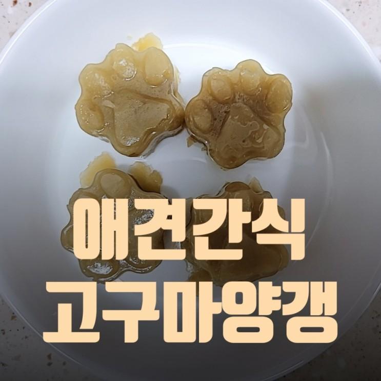변비 있는 애견 간식 직접 만들기 고구마 양갱