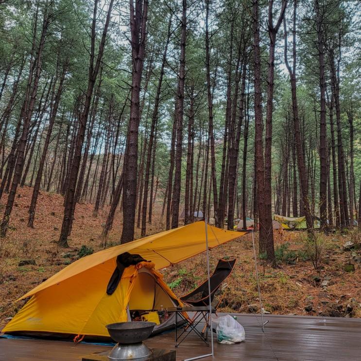 호명산 잣나무 숲속 캠핑장에서 힐링 캠프