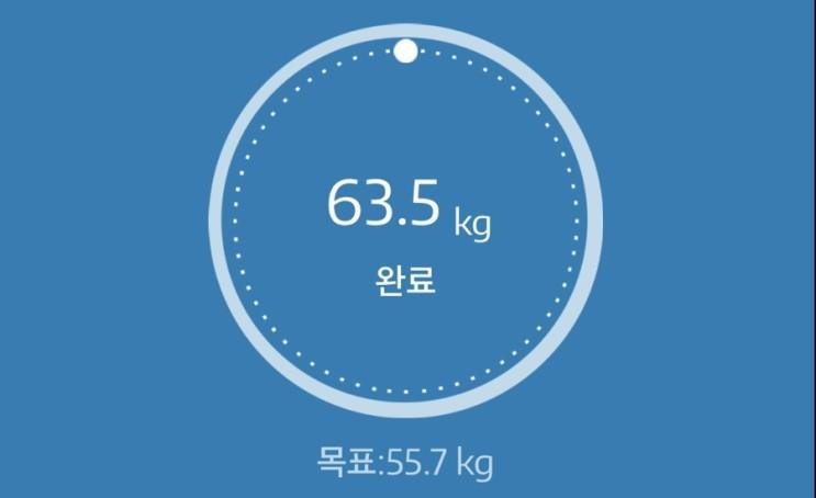 누베베 감비엑스 다이어트 식단 59일차