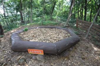 익산 아이와 가볼만한곳. 서동공원유아숲체험원