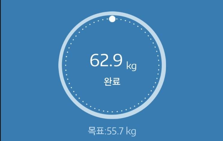 누베베 감비엑스 다이어트 식단 62일차