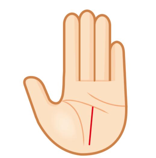 자신의 왼손을 체크 - 운명선