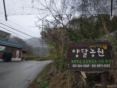 [2021.04.02 용인캠핑장] 양달농원캠핑장 / 양달캠핑장