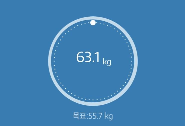 누베베 감비엑스 다이어트 식단 63일차