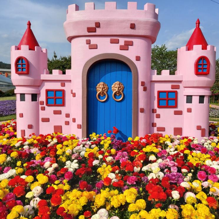 핑크 궁전 콧바람 쐬다 꽃구경 가세