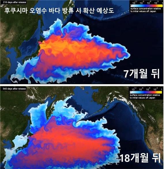 독일 헬름홀츠에서 만든 후쿠시마 방류수 예측