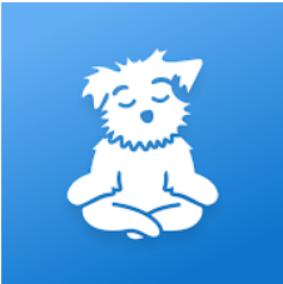 명상(Down Dog), 가이드 명상과 수면 명상