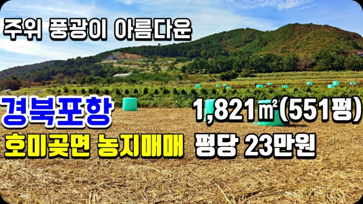 포항농지매매-호미곶면 대보리 1,821(551평) 논 매매