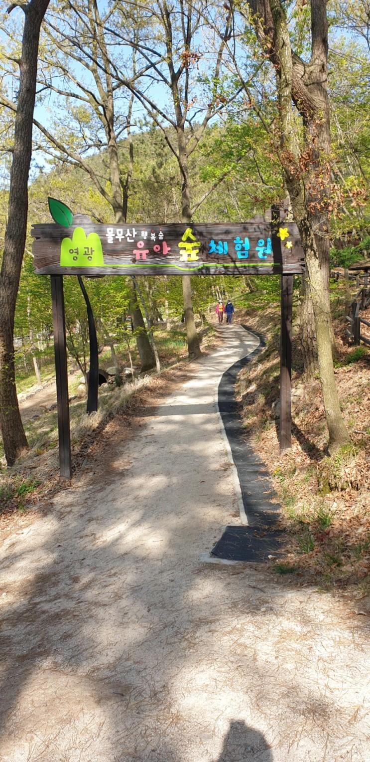 영광 아이와 가볼만한곳. 물무산 행복숲 유아숲체험원