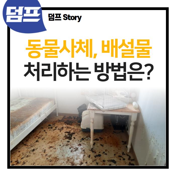동물 사체처리, 반려동물 배변 청소 덤프로 해결하세요?
