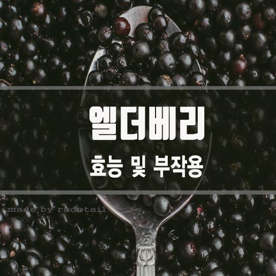 엘더베리 효능과 부작용 / 삼부커스