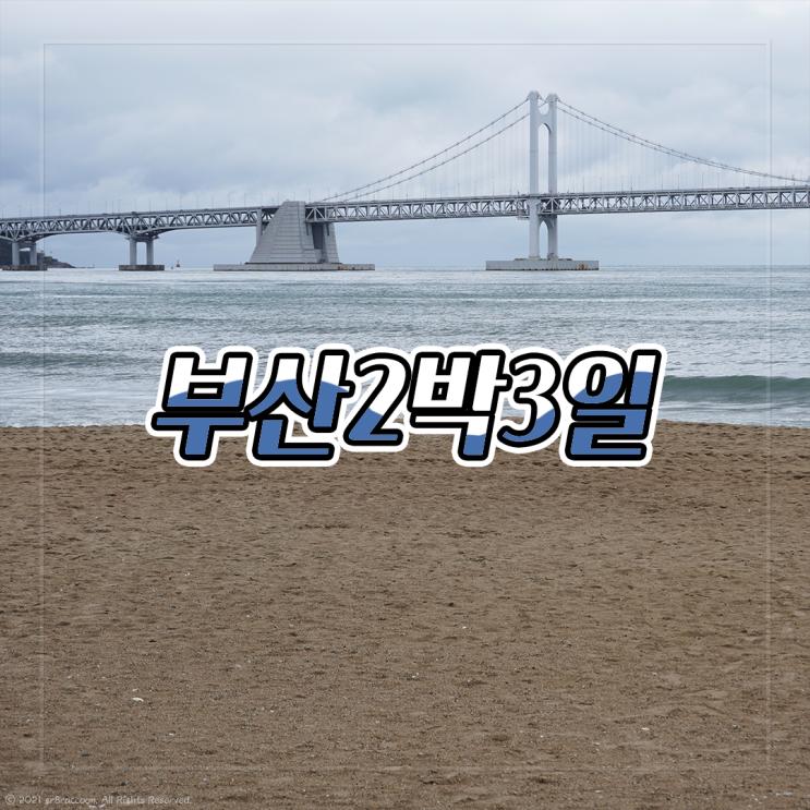 3년차 커플이 다녀온 부산 뚜벅이 여행 2박3일 코스 꿀잼!