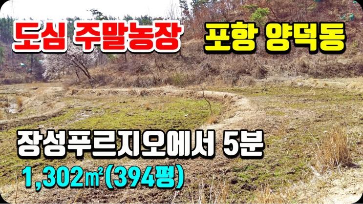 포항부동산 양덕동 산속의 주말농장 텃밭 토지매매-장성푸르지오에서 1Km