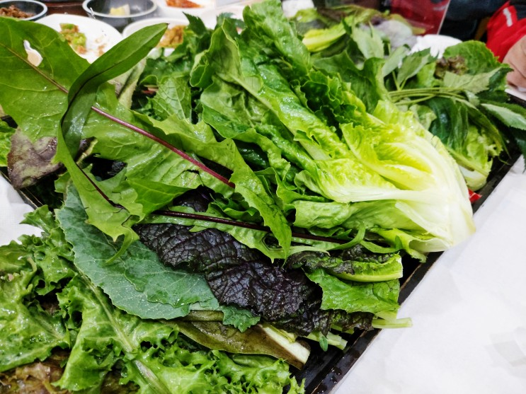 충북 제천 유기농 쌈밥이 너무 맛있었던 음식점! 산아래 다녀왔습니다!
