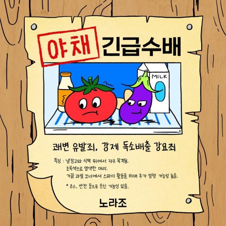 노라조 - 야채 [노래가사, 듣기, MV]