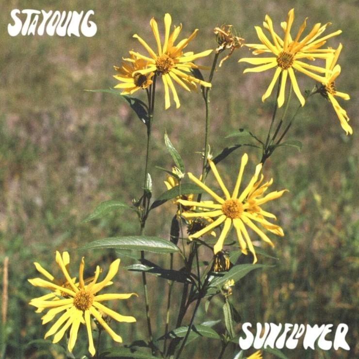 stayoung - Sunflower [노래가사, 듣기, Audio]