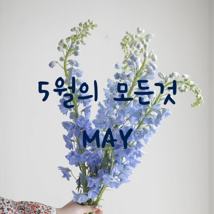 5월의 모든것 - 명언, 별자리, 탄생석, 탄생화, 달력, 유명인, 영화추천, 노래추천, 5월 배경화면, 근로자의날, 어버이날