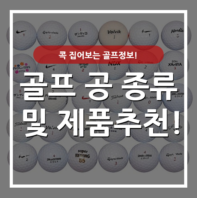 [콕! 집어보는 골프정보!] 골프 공 종류 및 제품추천!