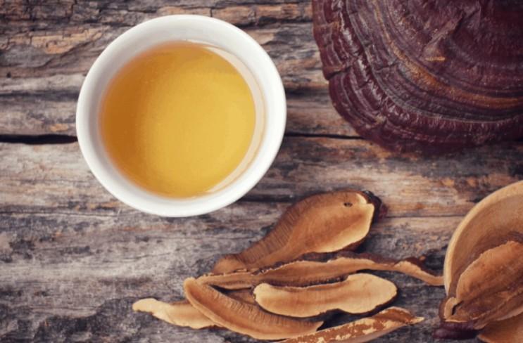 영지버섯 끓이는법 그리고 효능 (영지버섯 캡슐)