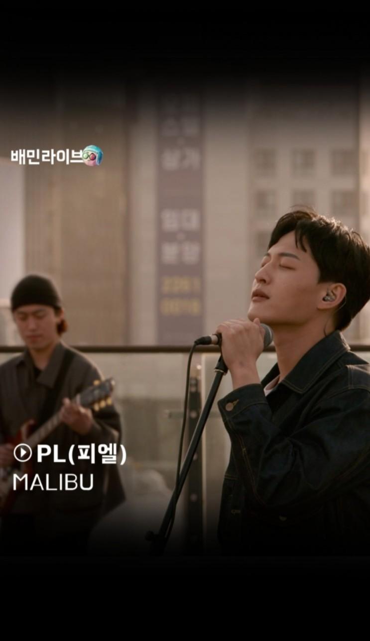 Malibu - PL(피엘)