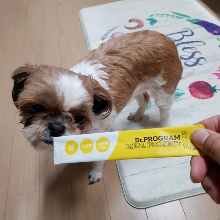 사료에 뿌려먹는 강아지습식사료 닥터프로그램 밀프로젝트