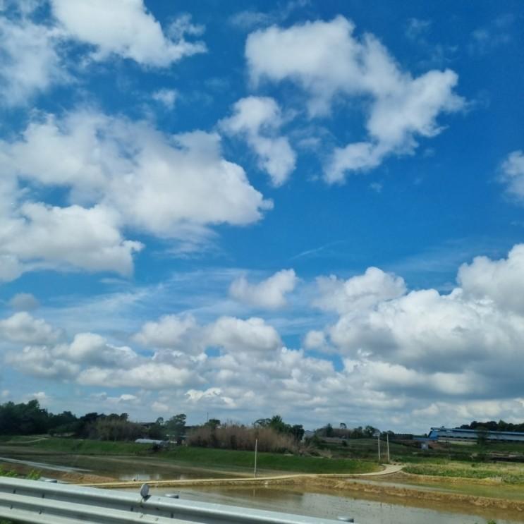 기가막히게 날씨 좋은 일요일. 출근..^^ 감사일기