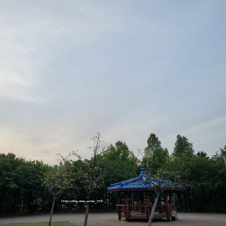 5월3일, 밍구와 산책