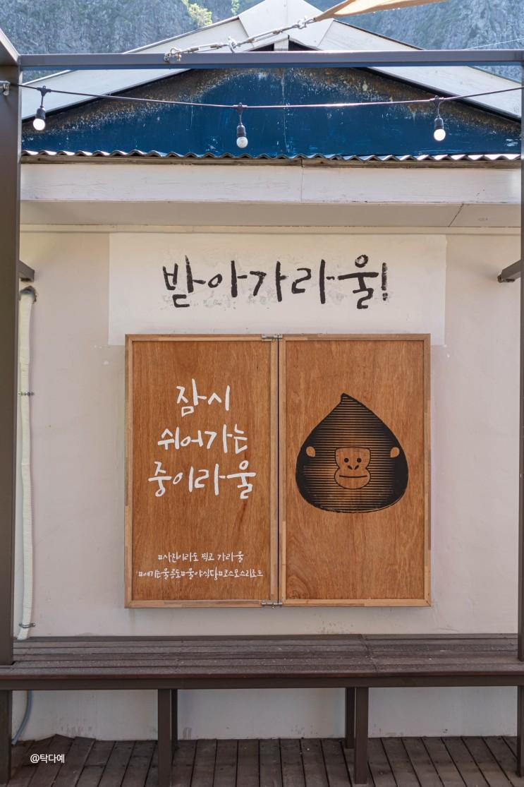 경북 울릉도 핫플 천부마을 산책 울야식당 버스타고 여자혼자국내여행