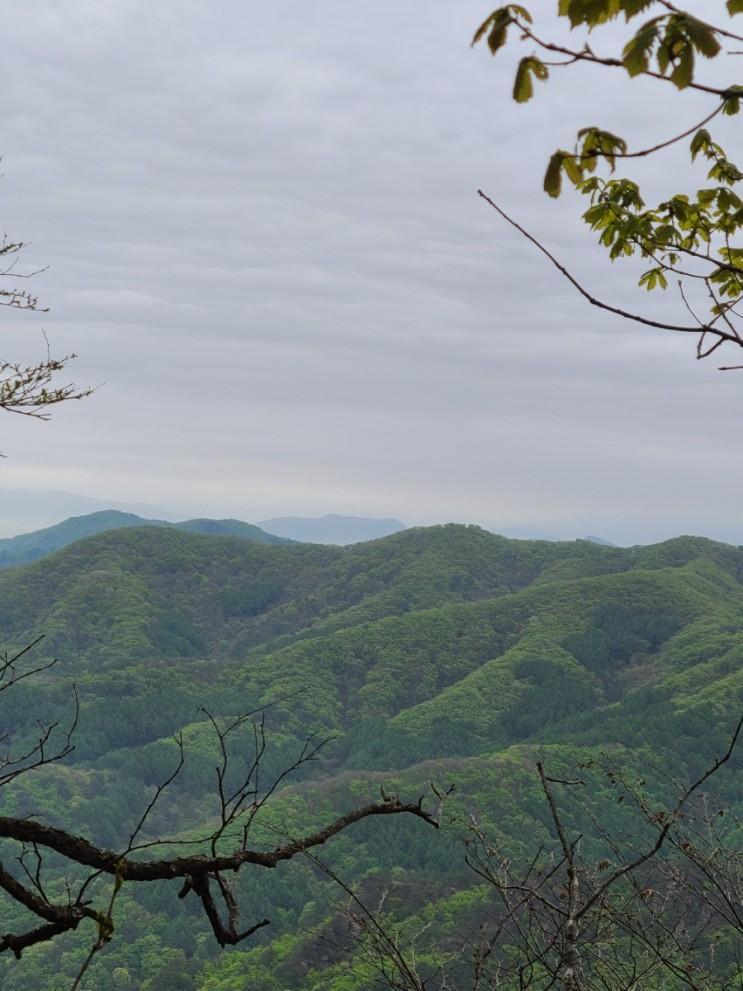 100대명산-72, 원주 감악산 최단 코스  등산(주차장~감악산~원점)